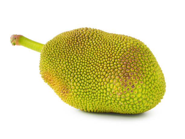 Jackfruit image