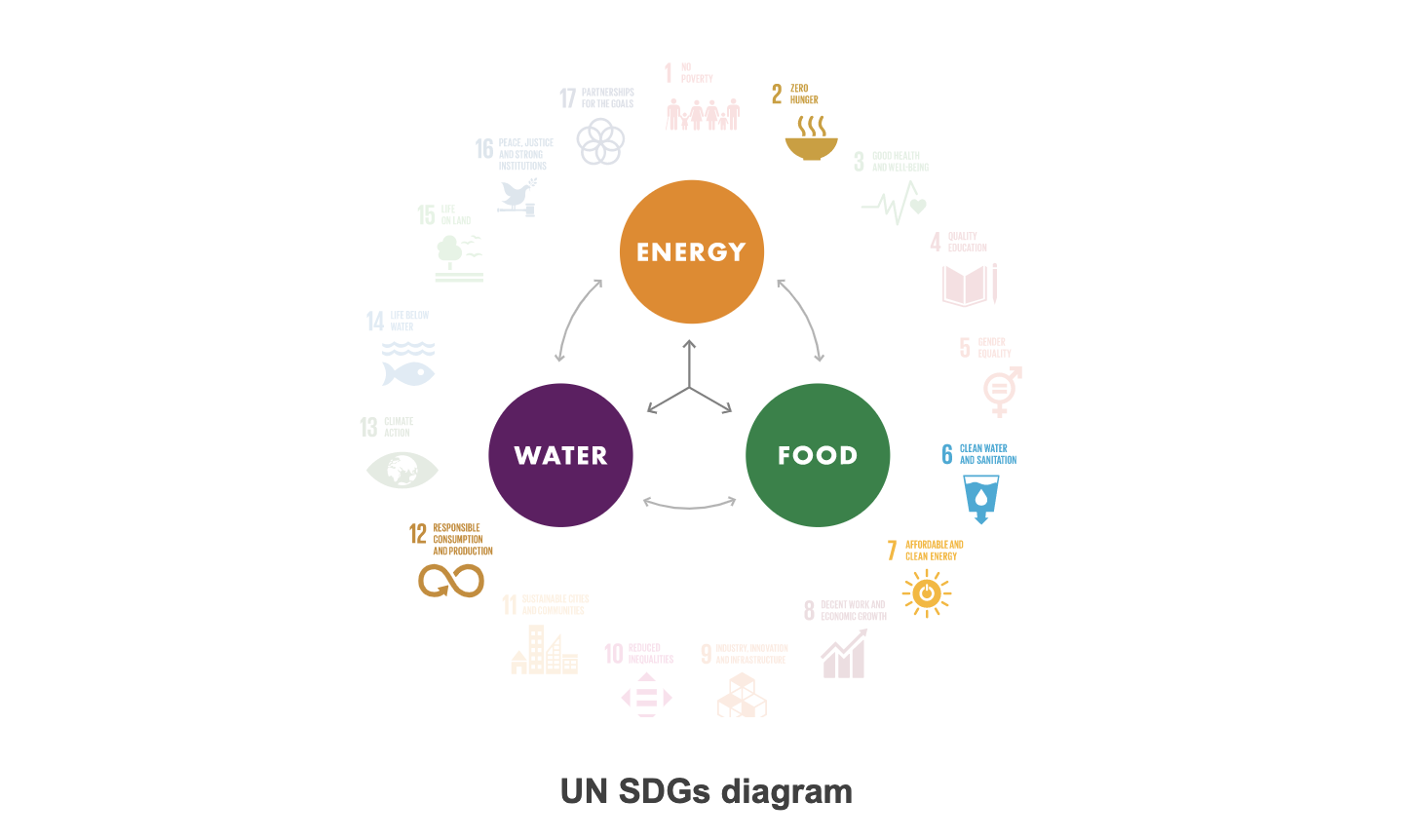 UN SDG diagram Oman